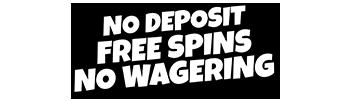 No deposit free spins no wagering